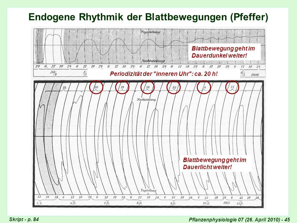Pflanzenphysiologie 07 (26. April 2010) - 45 Endogene Rhythmik: Blattbewegungen Endogene Rhythmik der Blattbewegungen (Pfeffer) Skript - p. 84 Blattbe