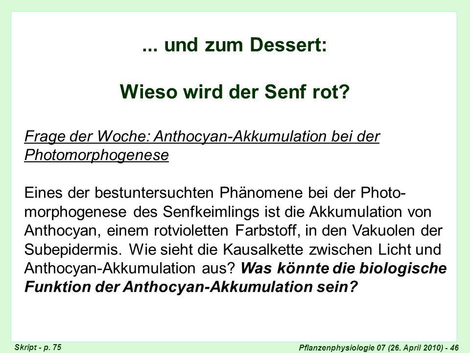 Pflanzenphysiologie 07 (26. April 2010) - 46... und zum Dessert: Wieso wird der Senf rot? Frage der Woche: Anthocyan-Akkumulation bei der Photomorphog