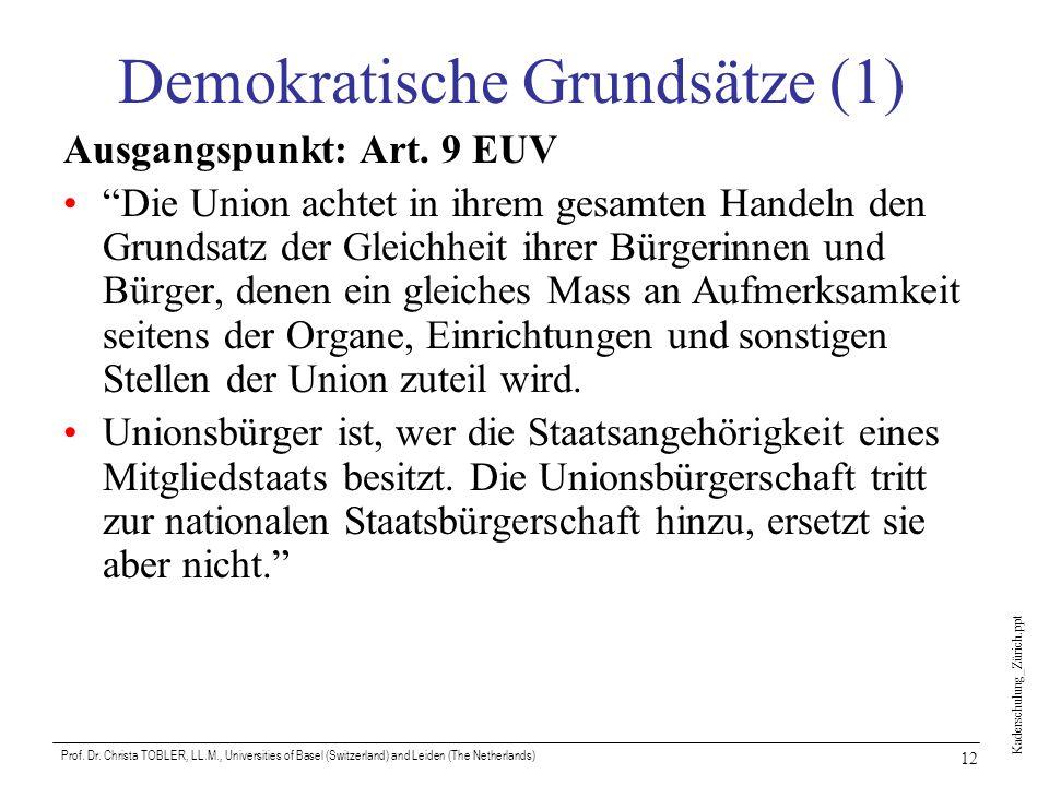 Kaderschulung_Zürich.ppt Prof. Dr. Christa TOBLER, LL.M., Universities of Basel (Switzerland) and Leiden (The Netherlands) 12 Demokratische Grundsätze