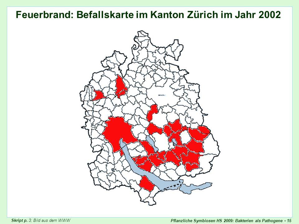 Pflanzliche Symbiosen HS 2009: Bakterien als Pathogene - 15 Feuerbrand: Befallskarte im Kanton Zürich im Jahr 2002 Feuerbrand Kt Zürich Skript p. 3; B