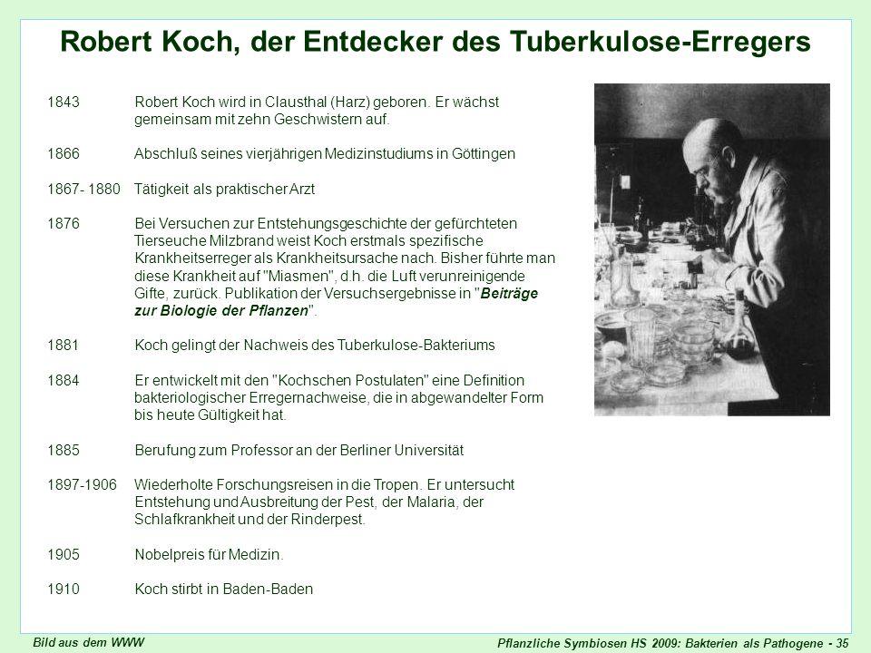 Pflanzliche Symbiosen HS 2009: Bakterien als Pathogene - 35 Robert Koch, der Entdecker des Tuberkulose-Erregers Robert Koch 1843Robert Koch wird in Cl