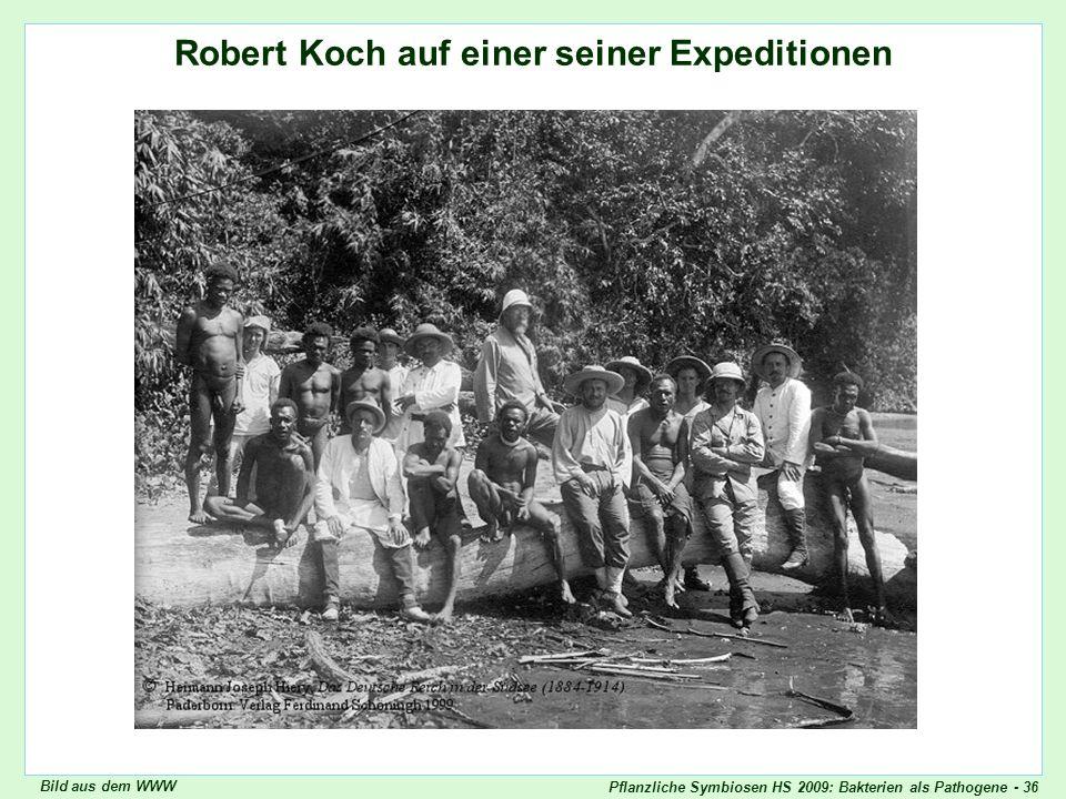 Pflanzliche Symbiosen HS 2009: Bakterien als Pathogene - 36 Robert Koch auf einer seiner Expeditionen Robert Koch, Expedition Bild aus dem WWW