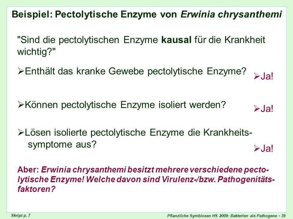 Pflanzliche Symbiosen HS 2009: Bakterien als Pathogene - 39 Beispiel: Pectolytische Enzyme von Erwinia chrysanthemi Beispiel: pectolytische Enzyme