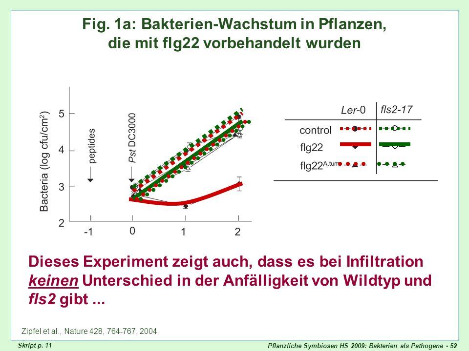 Pflanzliche Symbiosen HS 2009: Bakterien als Pathogene - 52 Zipfel Fig. 1a Fig. 1a: Bakterien-Wachstum in Pflanzen, die mit flg22 vorbehandelt wurden