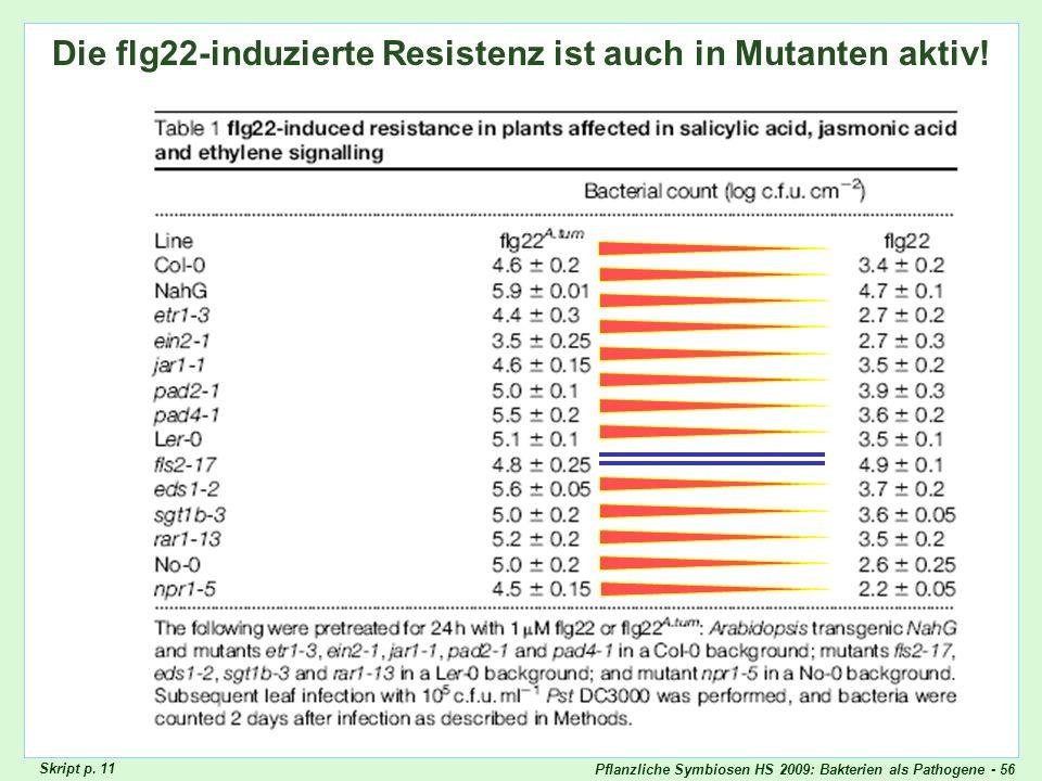 Pflanzliche Symbiosen HS 2009: Bakterien als Pathogene - 56 Die flg22-induzierte Resistenz ist auch in Mutanten aktiv! Skript p. 11