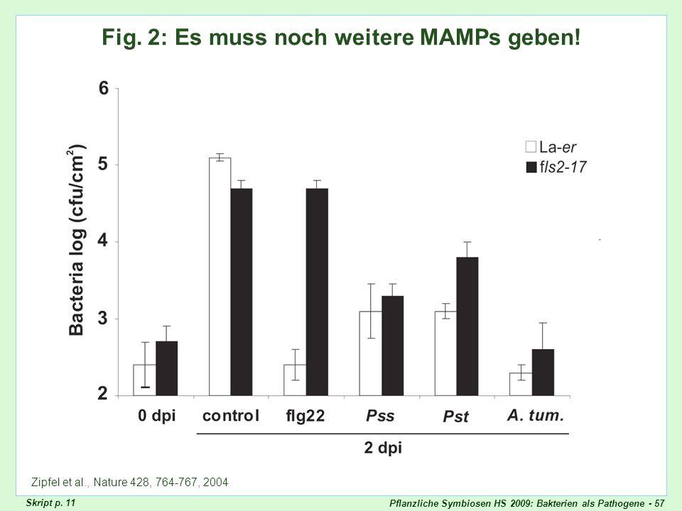 Pflanzliche Symbiosen HS 2009: Bakterien als Pathogene - 57 Zipfel Fig. 2 Fig. 2: Es muss noch weitere MAMPs geben! Zipfel et al., Nature 428, 764-767