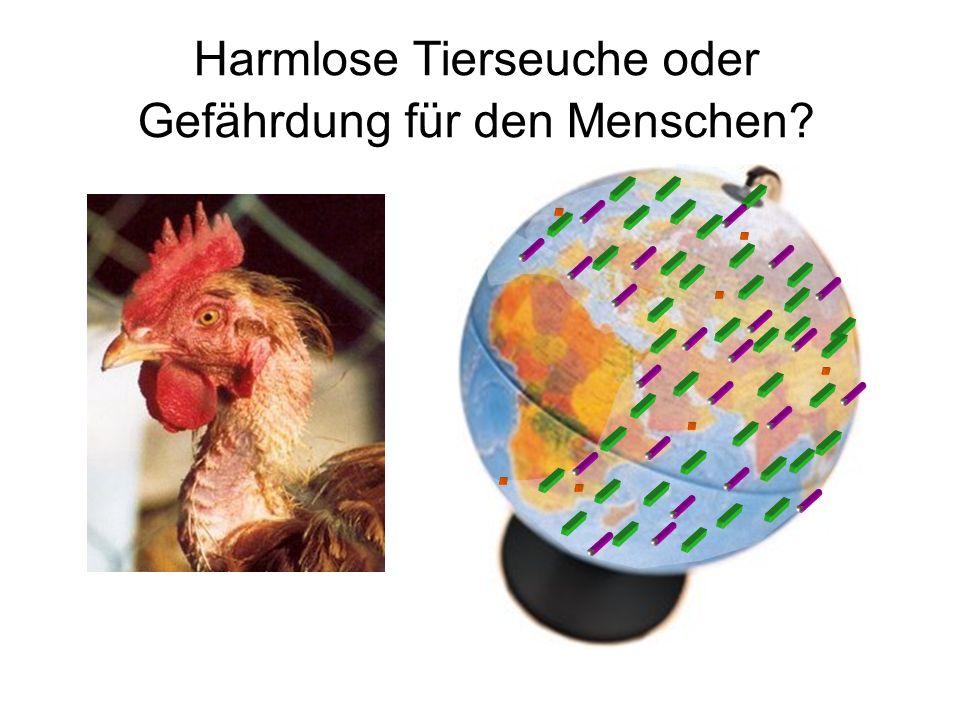 Harmlose Tierseuche oder Gefährdung für den Menschen?