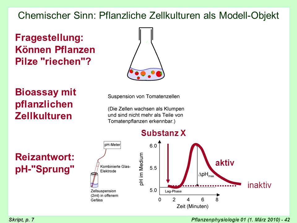 Pflanzenphysiologie 01 (1. März 2010) - 42 Chemischer Sinn: Pflanzliche Zellkulturen als Modell-Objekt Chemischer Sinn: Elicitoren Bioassay mit pflanz