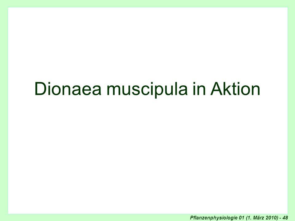 Pflanzenphysiologie 01 (1. März 2010) - 48 Venusfliegenfalle in action Dionaea muscipula in action... Venusfliegenfalle (Dionaea muscipula) Dionaea mu
