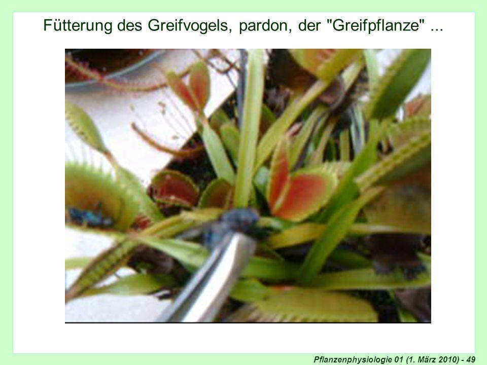 Pflanzenphysiologie 01 (1. März 2010) - 49 Fütterung des Greifvogels, pardon, der