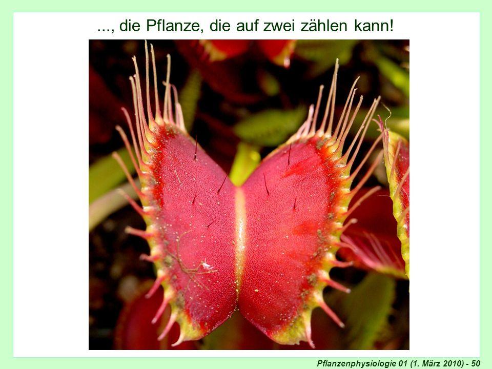 Pflanzenphysiologie 01 (1. März 2010) - 50..., die Pflanze, die auf zwei zählen kann! Fühlborsten Dionaea