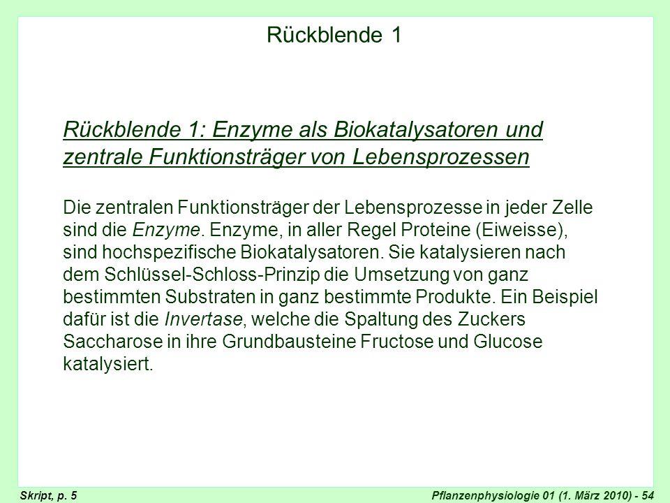 Pflanzenphysiologie 01 (1. März 2010) - 54 Rückblende 1: Enzyme als Biokatalysatoren und zentrale Funktionsträger von Lebensprozessen Die zentralen Fu