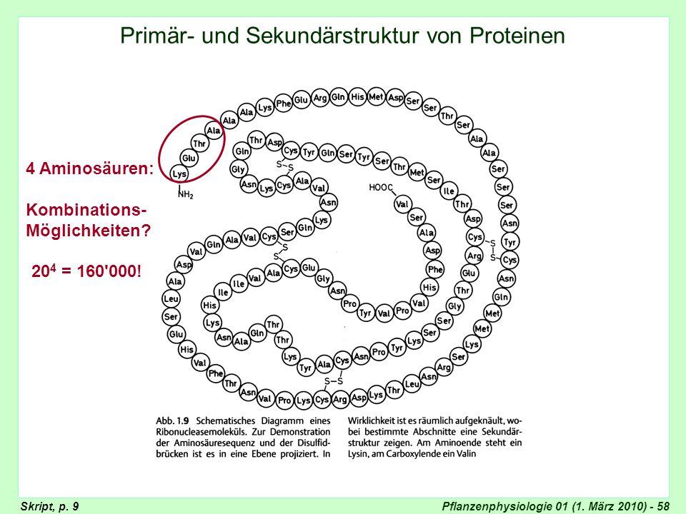 Pflanzenphysiologie 01 (1. März 2010) - 58 Primär- und Sekundärstruktur Primär- und Sekundärstruktur von Proteinen 4 Aminosäuren: Kombinations- Möglic