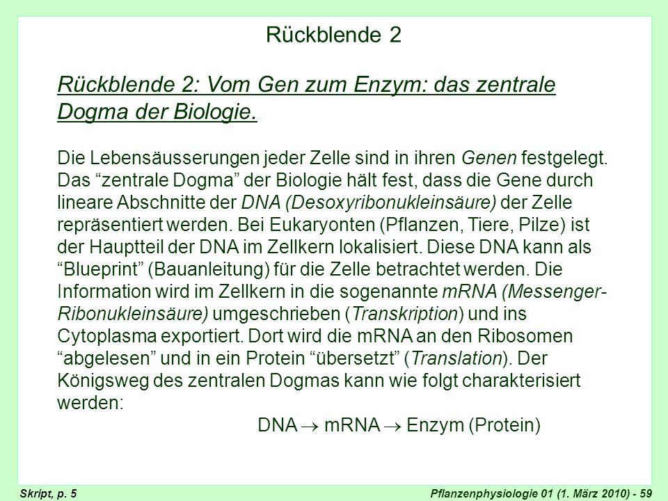 Pflanzenphysiologie 01 (1. März 2010) - 59 Rückblende 2: Vom Gen zum Enzym: das zentrale Dogma der Biologie. Die Lebensäusserungen jeder Zelle sind in