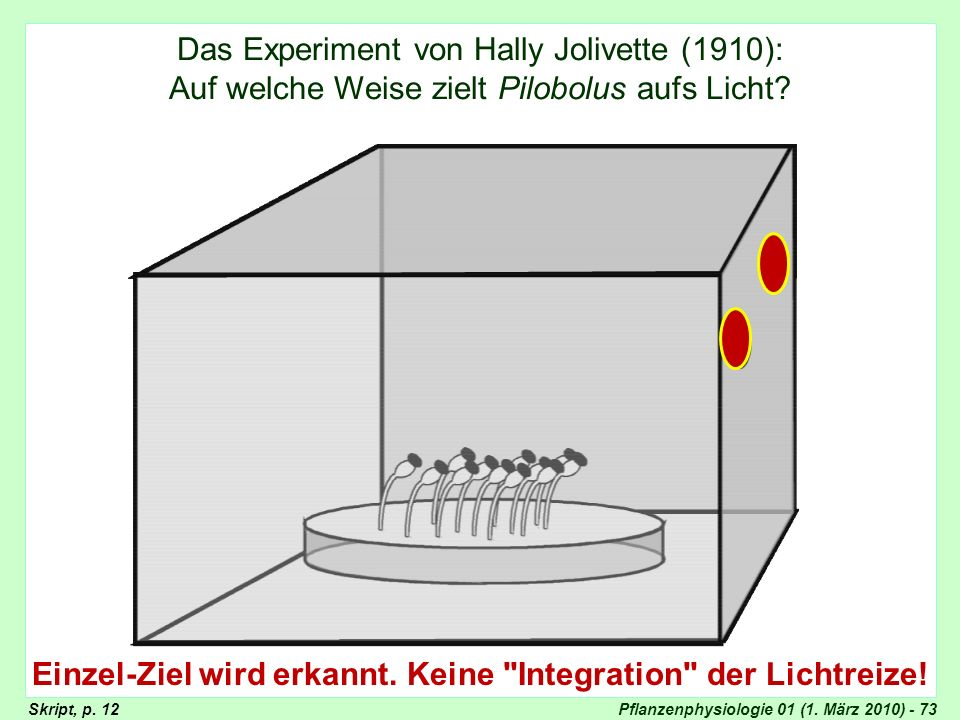 Pflanzenphysiologie 01 (1. März 2010) - 73 Das Experiment von Hally Jolivette (1910): Auf welche Weise zielt Pilobolus aufs Licht? Experiment von Hall