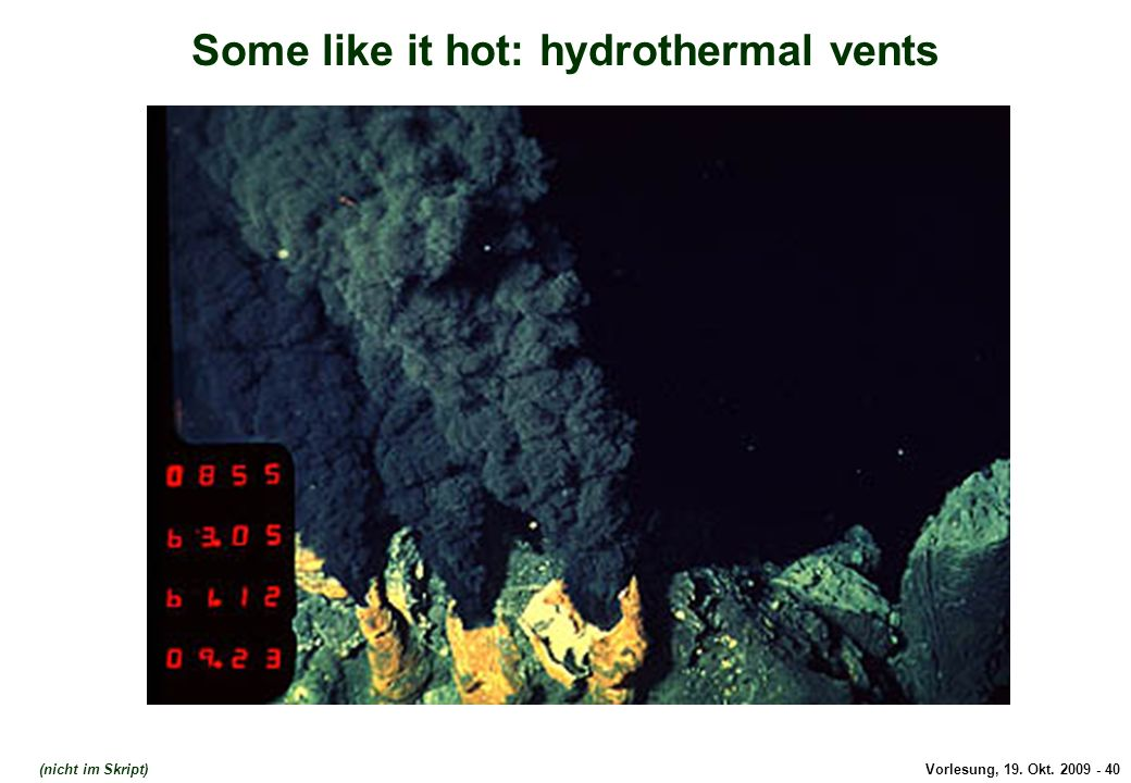 Vorlesung, 19. Okt. 2009 - 40 Some like it hot: hydrothermal vents Hydrothermal vents (nicht im Skript)
