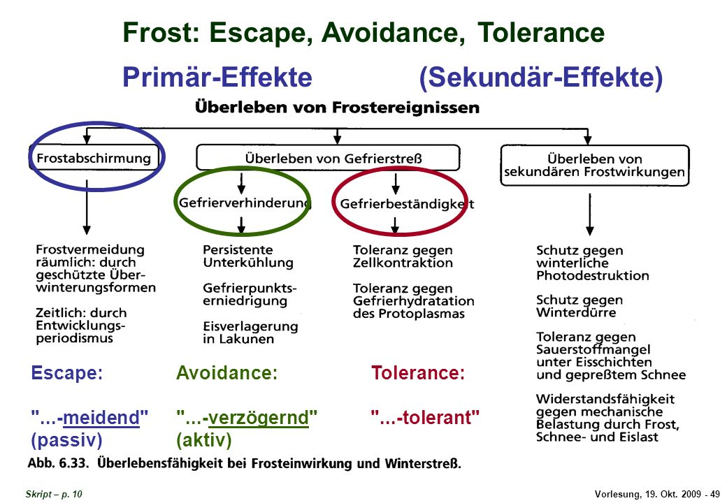 Vorlesung, 19. Okt. 2009 - 49 Frost: Escape, Avoidance, Tolerance Skript – p. 10 Escape: