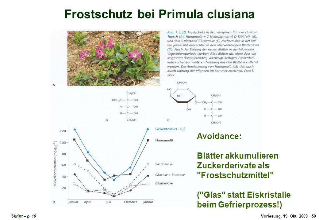 Vorlesung, 19.Okt. 2009 - 50 Frostschutz bei Primula clusiana Skript – p.