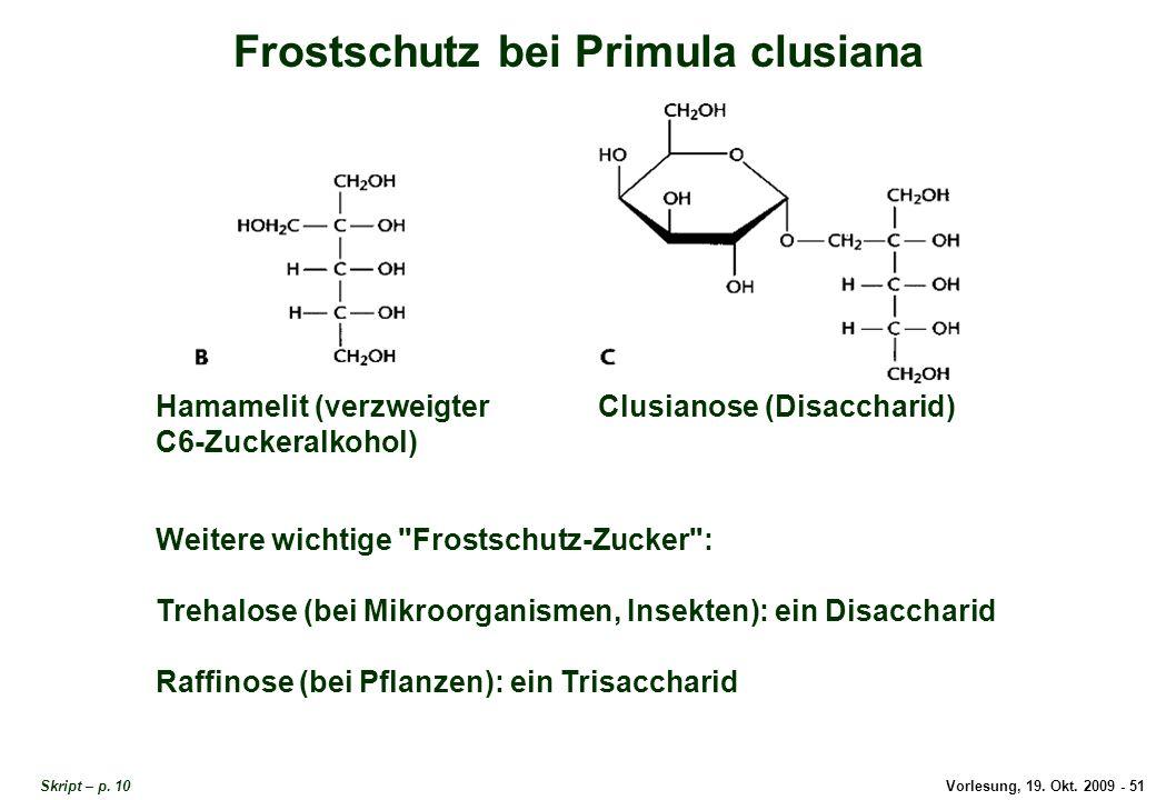 Vorlesung, 19.Okt. 2009 - 51 Frostschutz bei Primula clusiana Skript – p.