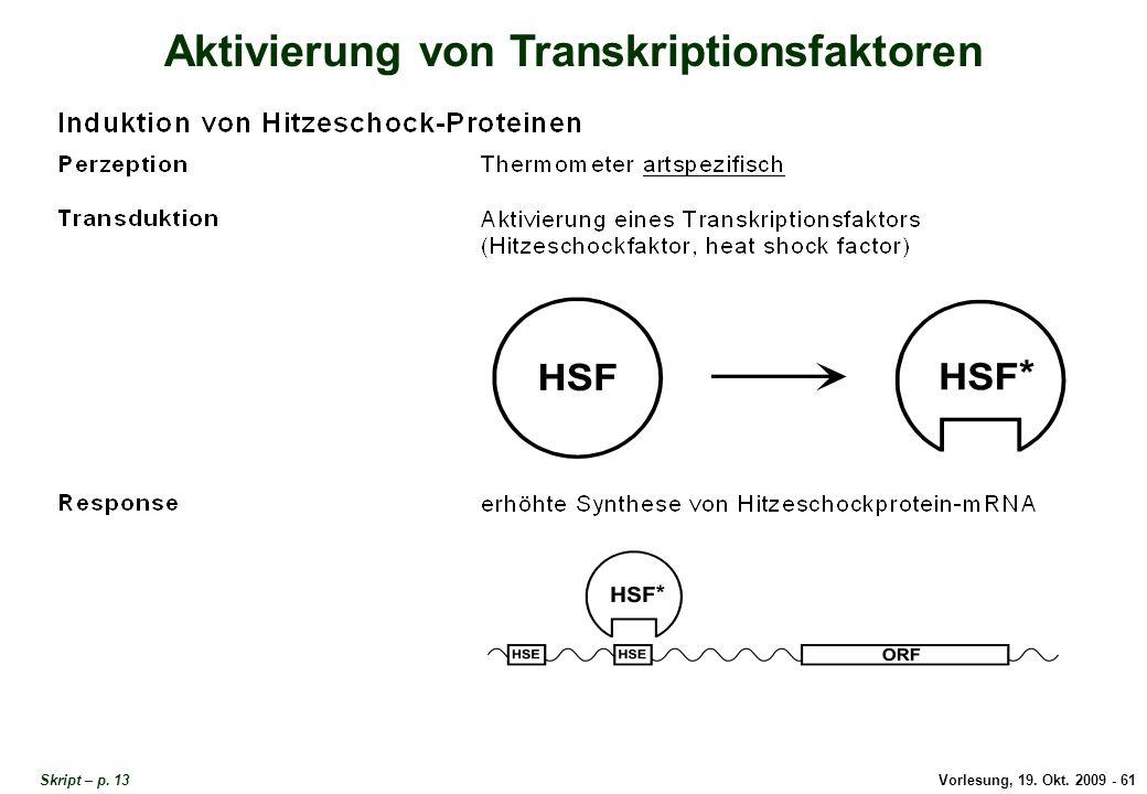 Vorlesung, 19.Okt. 2009 - 61 Aktivierung von Transkriptionsfaktoren Skript – p.