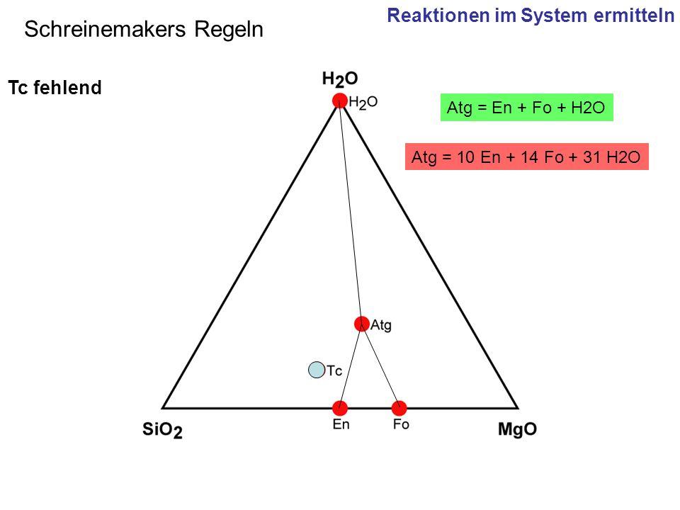 Atg = 10 En + 14 Fo + 31 H2O Atg = En + Fo + H2O Schreinemakers Regeln Tc fehlend Reaktionen im System ermitteln