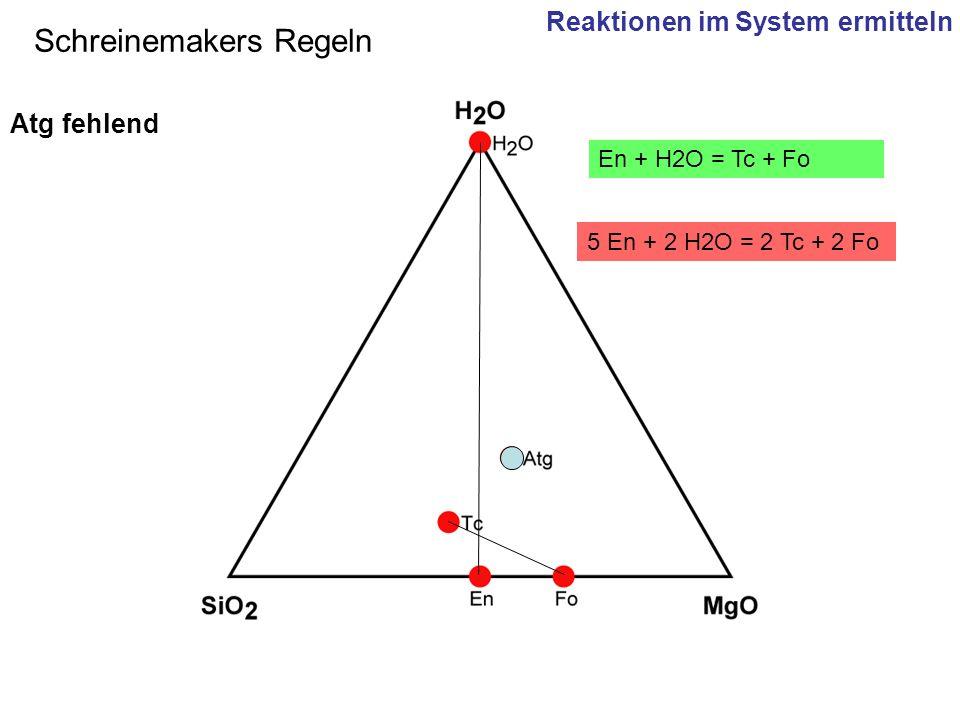 5 En + 2 H2O = 2 Tc + 2 Fo En + H2O = Tc + Fo Schreinemakers Regeln Atg fehlend Reaktionen im System ermitteln