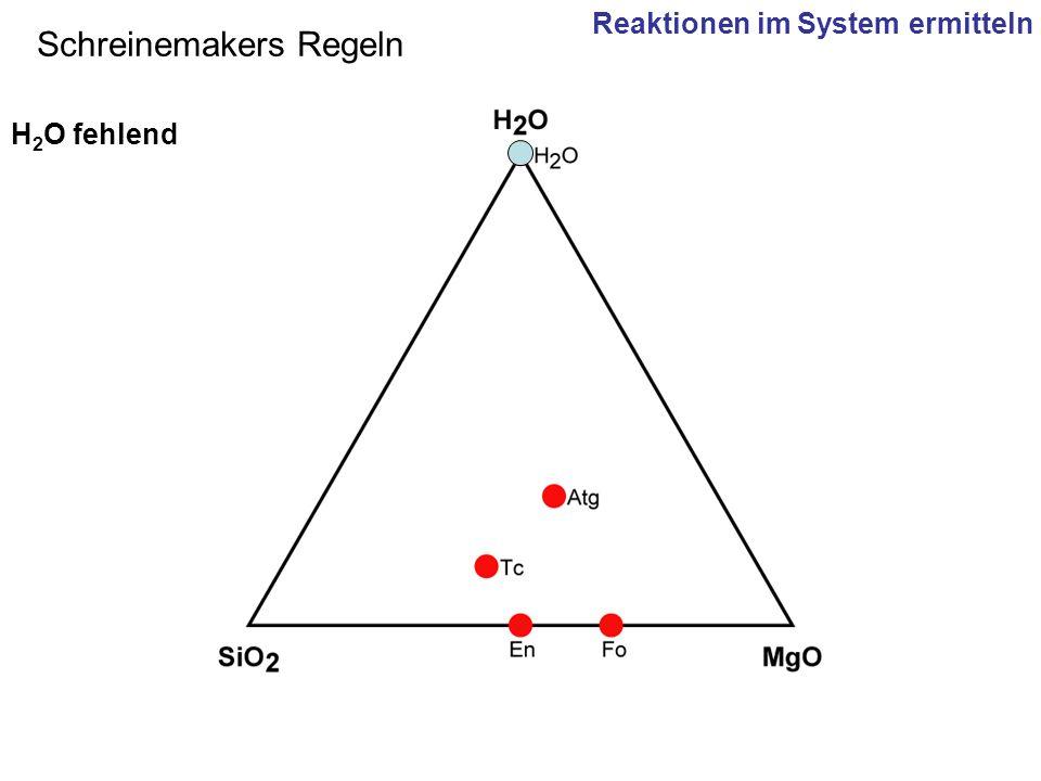 Schreinemakers Regeln H 2 O fehlend Reaktionen im System ermitteln