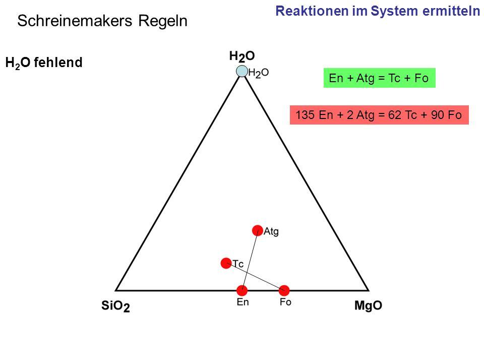 135 En + 2 Atg = 62 Tc + 90 Fo En + Atg = Tc + Fo Schreinemakers Regeln H 2 O fehlend Reaktionen im System ermitteln