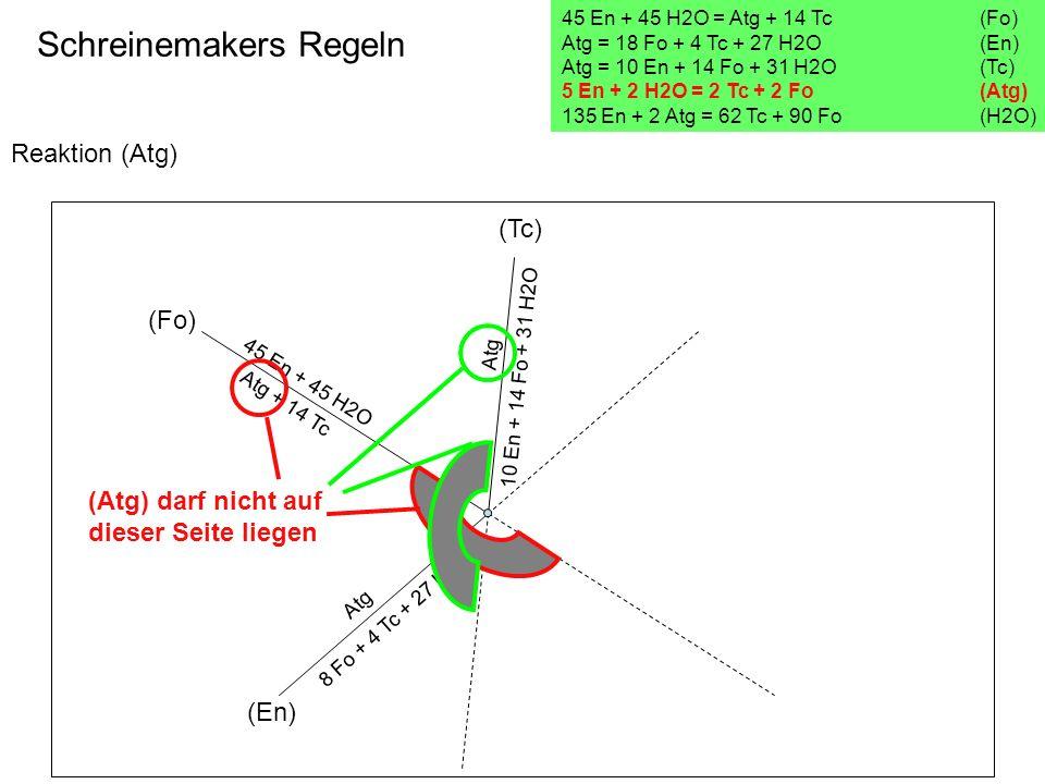 Reaktion (Atg) Schreinemakers Regeln 45 En + 45 H2O = Atg + 14 Tc(Fo) Atg = 18 Fo + 4 Tc + 27 H2O (En) Atg = 10 En + 14 Fo + 31 H2O (Tc) 5 En + 2 H2O