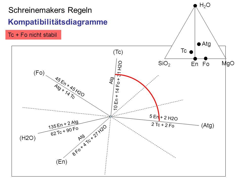 Tc + Fo nicht stabil Schreinemakers Regeln 45 En + 45 H2O Atg + 14 Tc (Fo) (En) Atg (Tc) (Atg) 5 En + 2 H2O 2 Tc + 2 Fo 8 Fo + 4 Tc + 27 H2O (H2O) 135