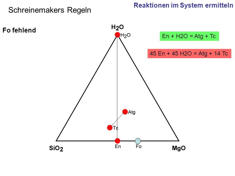 45 En + 45 H2O = Atg + 14 Tc En + H2O = Atg + Tc Schreinemakers Regeln Fo fehlend Reaktionen im System ermitteln