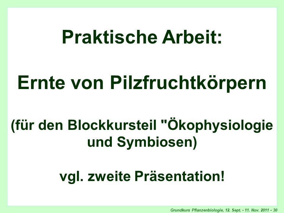 Grundkurs Pflanzenbiologie, 12. Sept. - 11. Nov. 2011 - 30 Titel