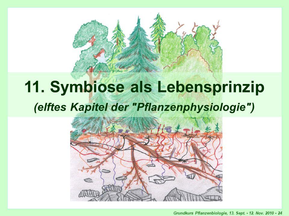 Grundkurs Pflanzenbiologie, 13. Sept. - 12. Nov. 2010 - 24 11. Symbiose als Lebensprinzip (elftes Kapitel der