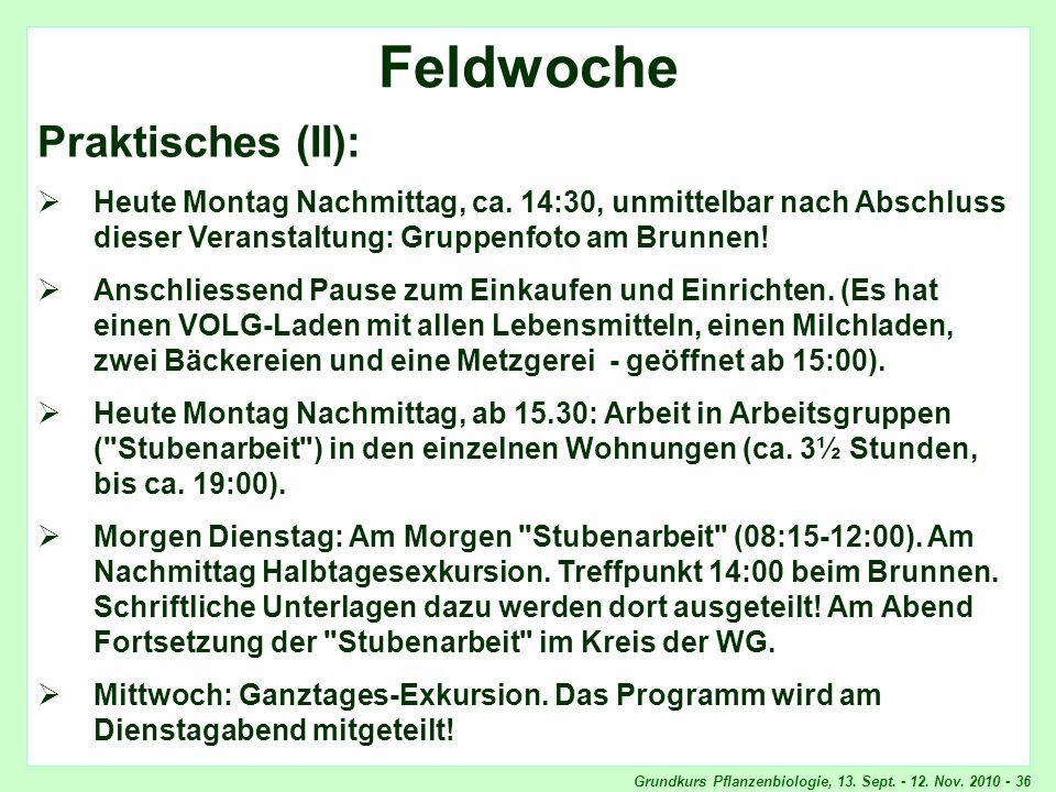 Grundkurs Pflanzenbiologie, 13. Sept. - 12. Nov. 2010 - 36 Feldwoche, Praktisches Feldwoche Praktisches (II): Heute Montag Nachmittag, ca. 14:30, unmi
