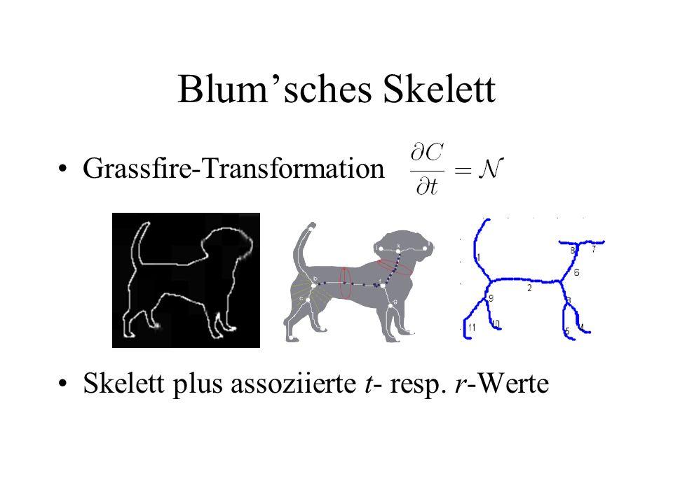 Blumsches Skelett Grassfire-Transformation Skelett plus assoziierte t- resp. r-Werte