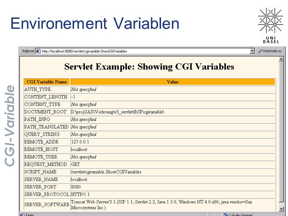 Environement Variablen CGI-Variable