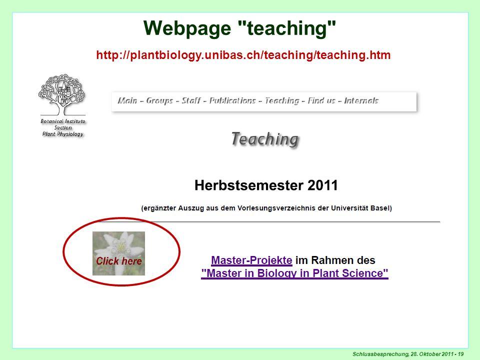 Schlussbesprechung, 28. Oktober 2011 - 19 Webpage