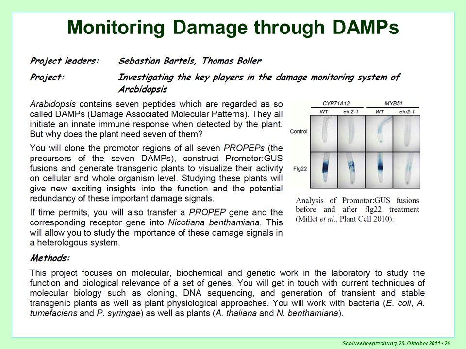 Schlussbesprechung, 28. Oktober 2011 - 26 Monitoring Damage through DAMPs