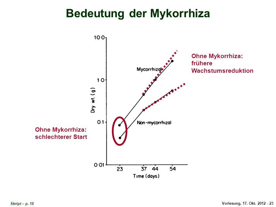 Vorlesung, 17. Okt. 2012 - 23 Bedeutung der Mykorrhiza Ohne Mykorrhiza: schlechterer Start Ohne Mykorrhiza: frühere Wachstumsreduktion Bedeutung der M