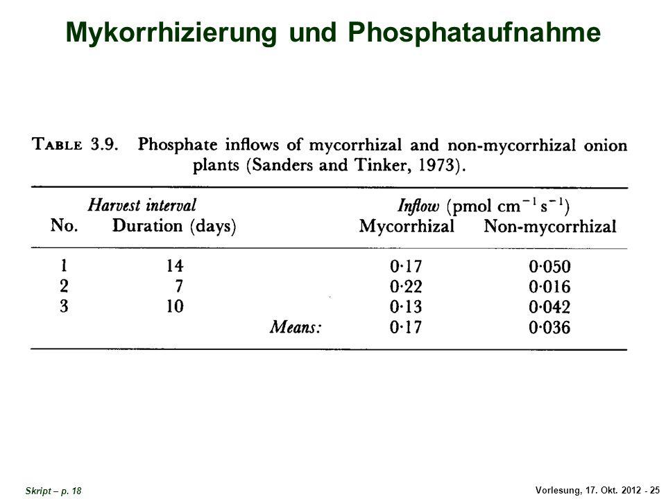 Vorlesung, 17. Okt. 2012 - 25 Mykorrhizierung und Phosphataufnahme Mykorrhizierung und Phosphat-Aufnahme Skript – p. 18