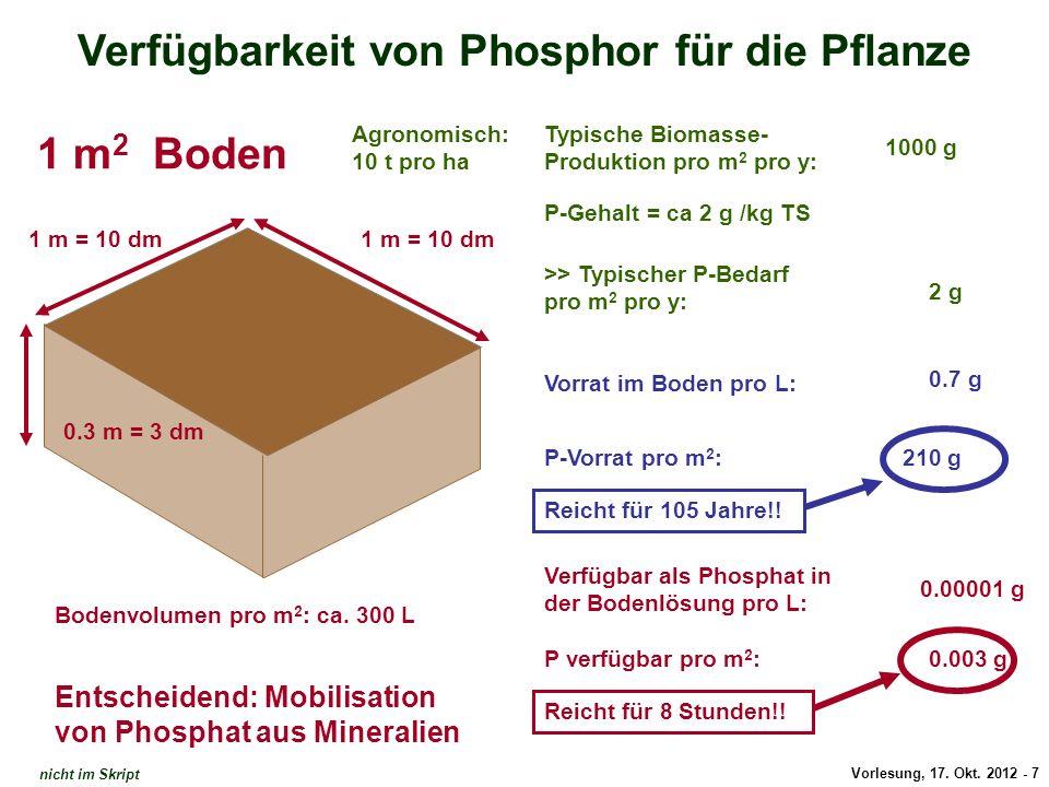 Vorlesung, 17. Okt. 2012 - 7 Verfügbarkeit von Phosphor für die Pflanze 1 m = 10 dm 0.3 m = 3 dm Typische Biomasse- Produktion pro m 2 pro y: P-Gehalt