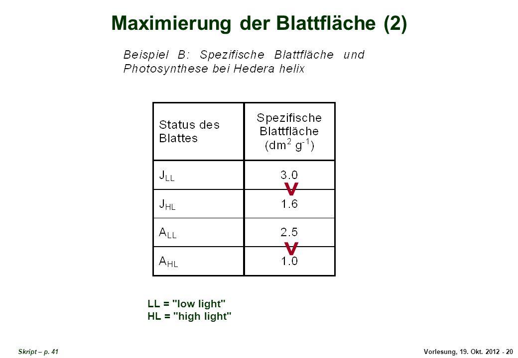 Vorlesung, 19. Okt. 2012 - 20 Skript – p. 41 Maximierung der Blattfläche (2) LL =