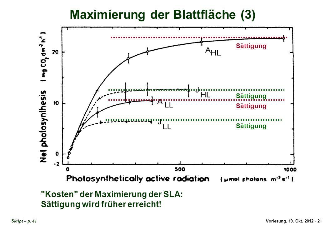 Vorlesung, 19. Okt. 2012 - 21 Skript – p. 41 Maximierung der Blattfläche (3) Sättigung