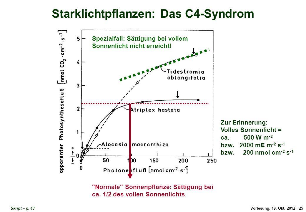 Vorlesung, 19. Okt. 2012 - 25 Skript – p. 43 Starklichtpflanzen: Das C4-Syndrom