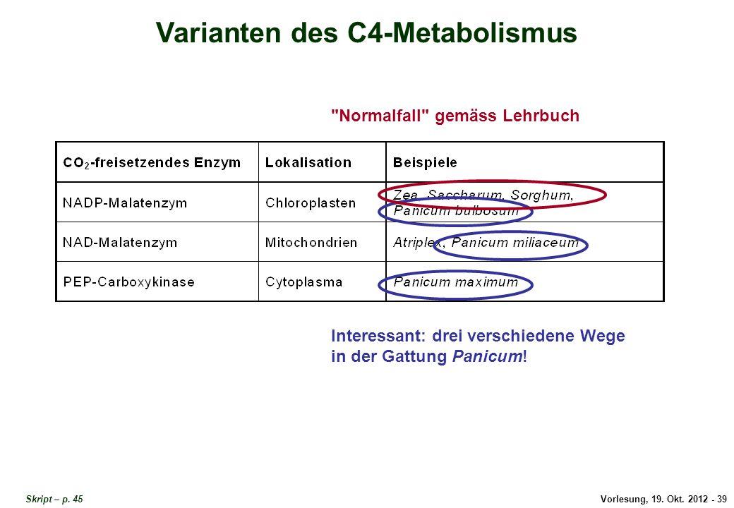 Vorlesung, 19. Okt. 2012 - 39 Skript – p. 45 Varianten des C4-Metabolismus Interessant: drei verschiedene Wege in der Gattung Panicum!