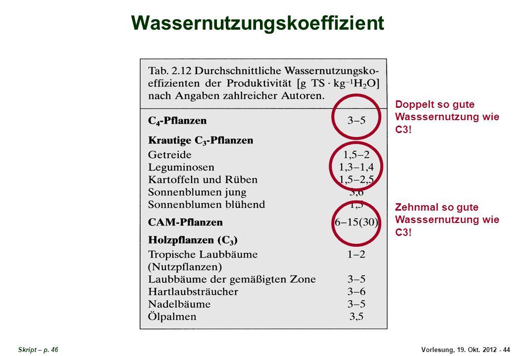 Vorlesung, 19. Okt. 2012 - 44 Skript – p. 46 Wassernutzungskoeffizient Doppelt so gute Wasssernutzung wie C3! Zehnmal so gute Wasssernutzung wie C3! W