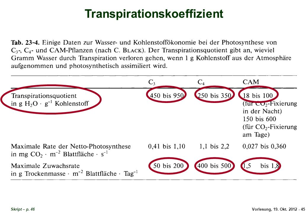 Vorlesung, 19. Okt. 2012 - 45 Skript – p. 46 Transpirationskoeffizient