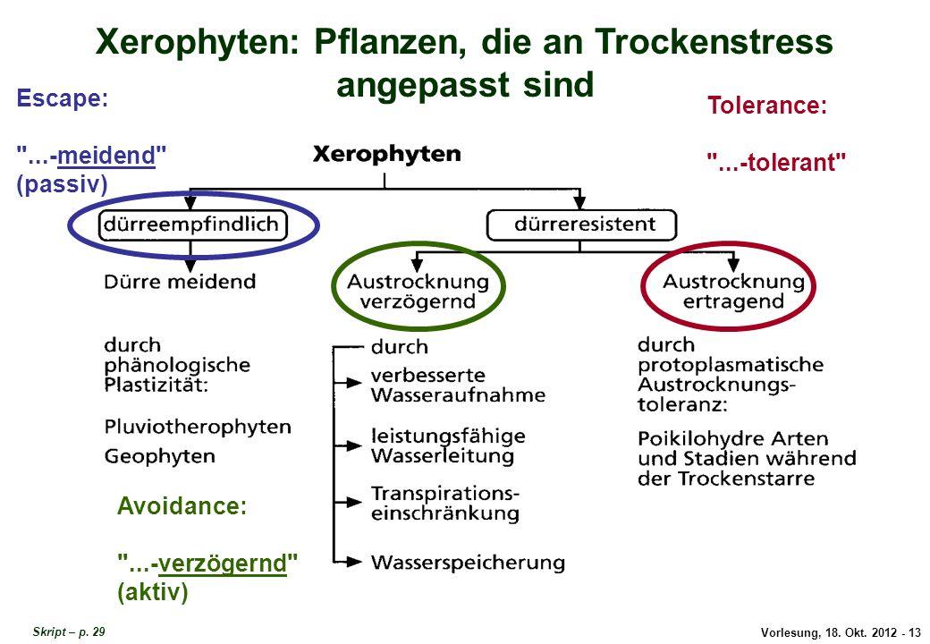 Vorlesung, 18. Okt. 2012 - 13 Xerophyten: Pflanzen, die an Trockenstress angepasst sind Escape: