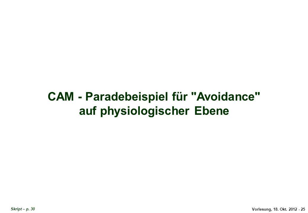 Vorlesung, 18. Okt. 2012 - 25 CAM - Paradebeispiel für