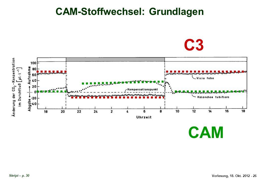 Vorlesung, 18. Okt. 2012 - 26 CAM-Stoffwechsel: Grundlagen C3 CAM CAM-Grundlagen 1 Skript – p. 30